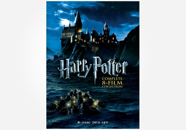Birthday gift idea for an 11 year old Harry Potter fan