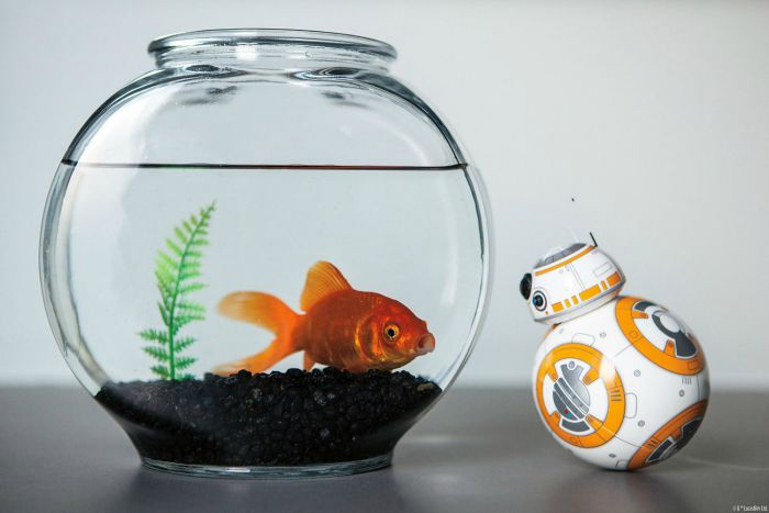 bb-8 star wars droid by sphero