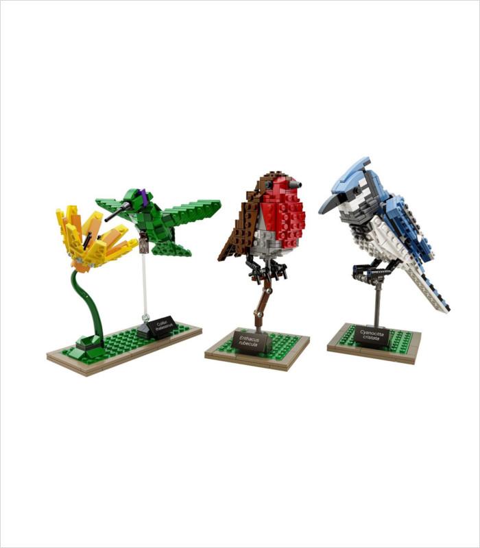 Coolest LEGO sets for kids - LEGO Ideas Birds Model Kit