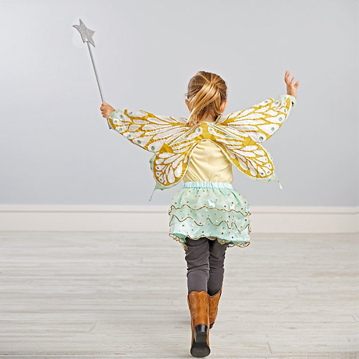 Animal costumes for kids - butterfly costume