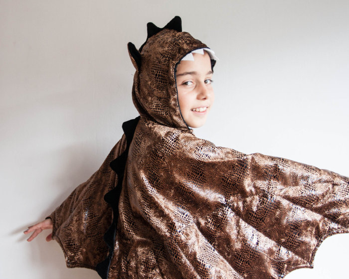 Animal costumes for kids - dragon skin costume