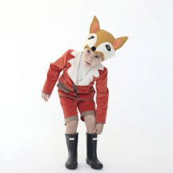 Animal costumes for kids - fox costume